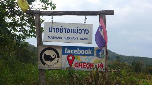 Der nächste Tag: Elefanten reiten!